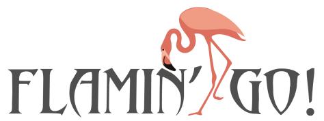 Flamingo logo 6