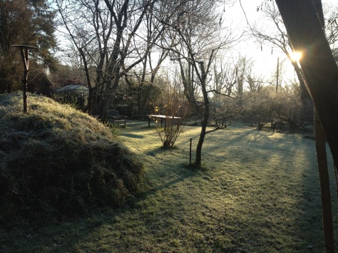 Frosty morning garden