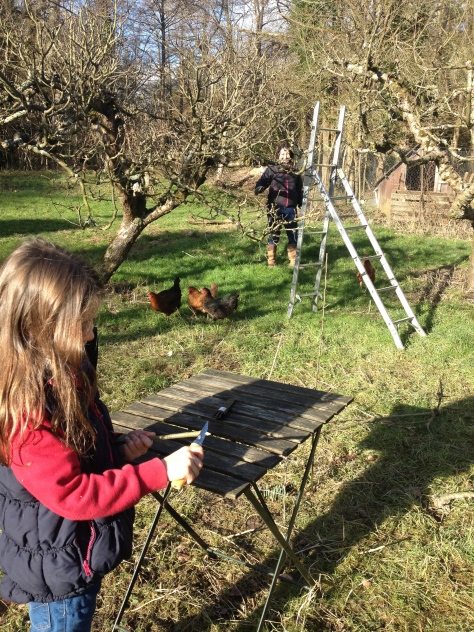 Tracy getting to grips with the winter pruning, and Tilly Whittling marshmallow toasting sticks