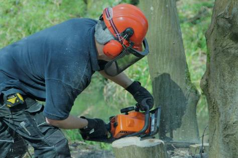 It isn't all beer and singing, there are chainsaws sawing and,
